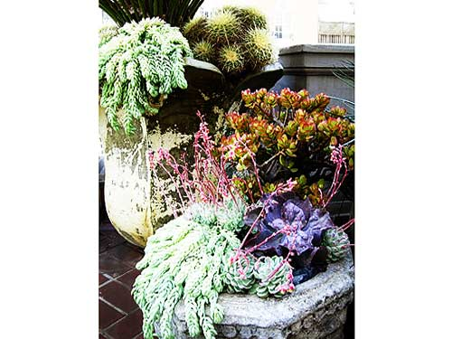 Salvage stone planters floral arrangement by: Living Green
