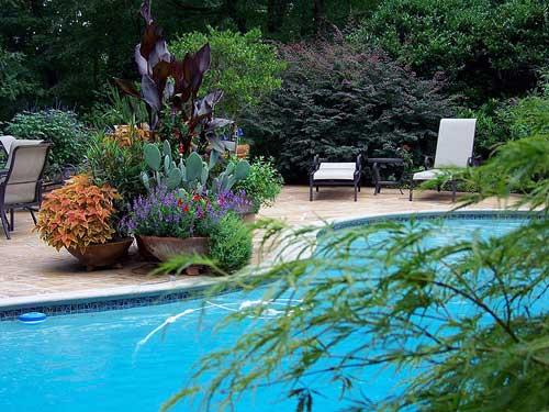 Garden Designs By: Rick Lee