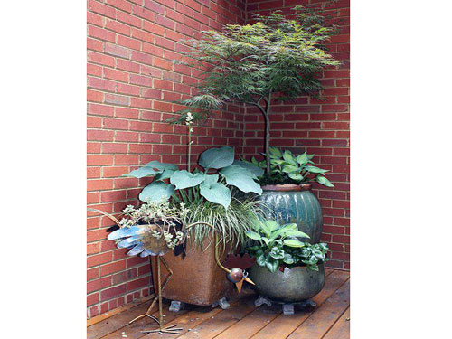 Container Gardening By- Rick Lee