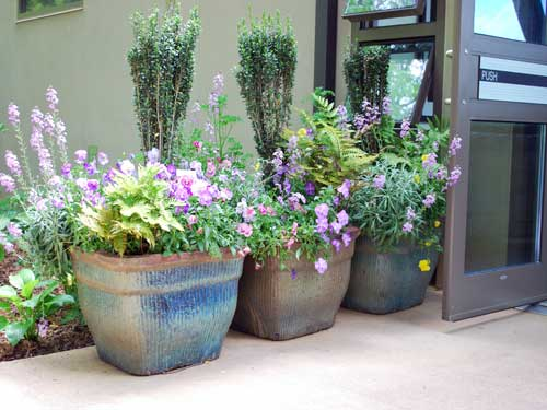 Container gardening in rustic green containers by- Amanda Campbell