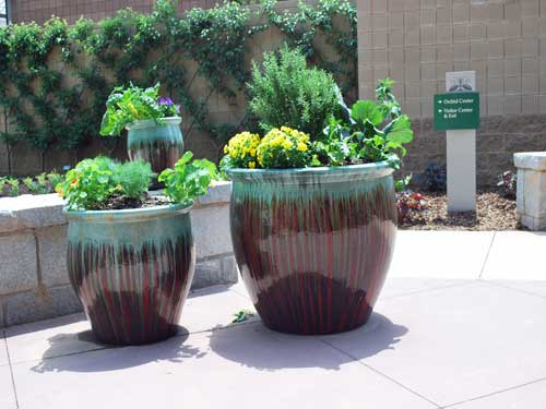 Multi Glazing containers add vibrance to your garden.