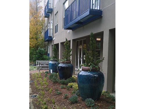 Container gardening using AW's container is the solution to a better gardening concept.