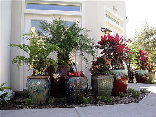 Container gardening – Jim Davis
