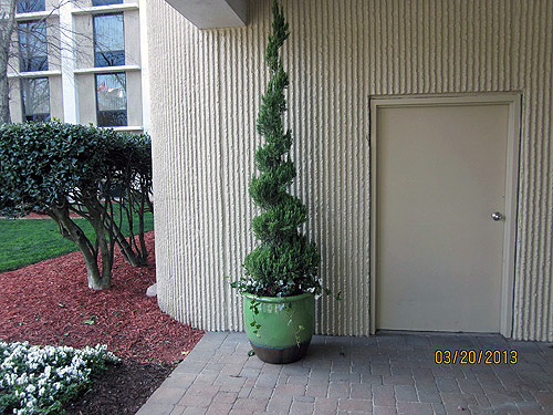 Container Gardening featured at Marriot Atlanta Airport Hotel.