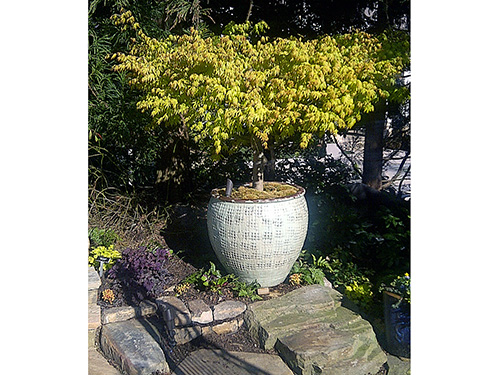 Creekmuir featuring AW Pottery container gardening in Sandy Spring