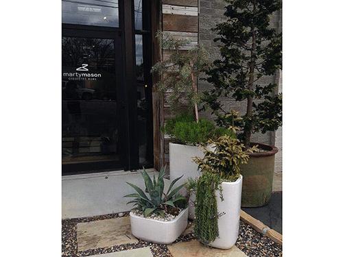 Container Gardening to brighten your backyard- Floral design by Matthew Klynn