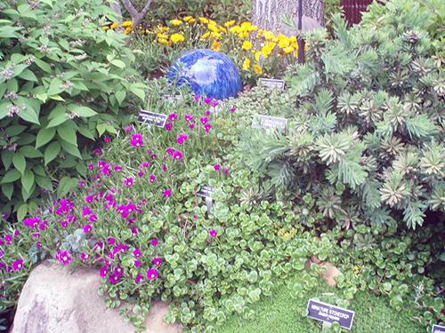 Gazing ball garden sculpture.