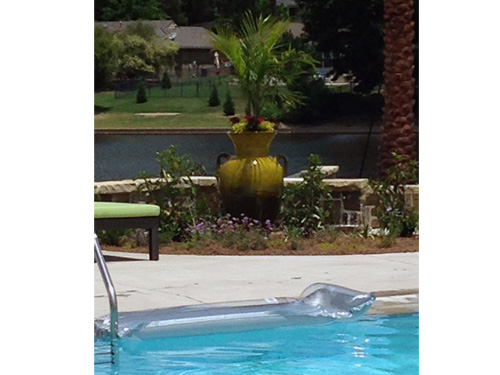 Fiesta yellow urn makes a great combination for container gardening