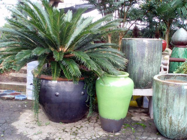 Container Gardening- Kim Wong