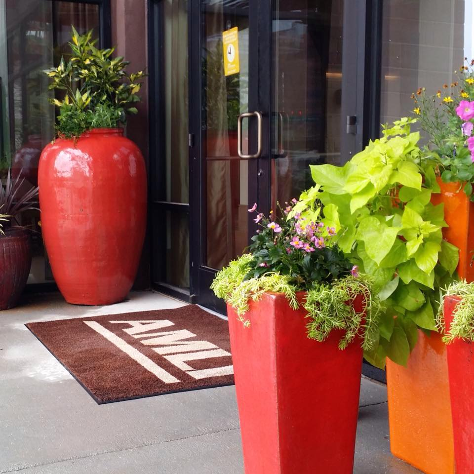 Clusters pots that help enhances your courtyard